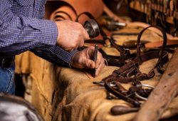 Bridle Making