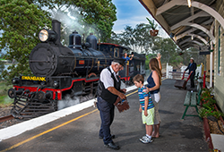 Ipswich Express (Museum entry & Train ride)