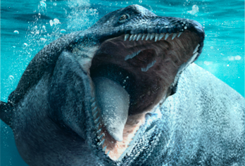 Sea Monsters: Prehistoric Ocean Predators Exhibition