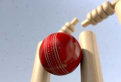 HOWZAT! The Science in Cricket