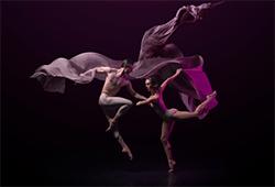 Queensland Ballet's Bespoke
